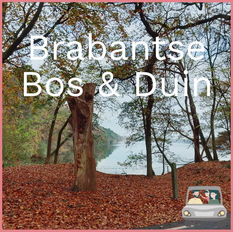 home brabantse bos & duin autopuzzeltocht